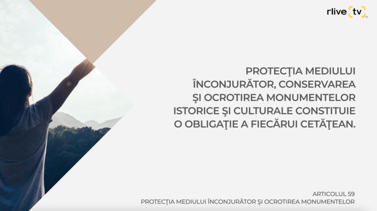Articolul 59, Protecţia mediului înconjurător şi ocrotirea monumentelor