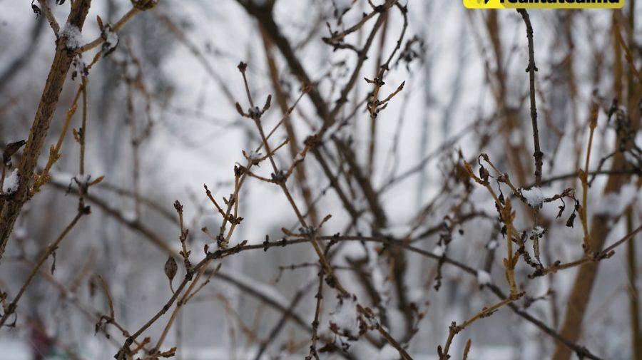Schimbare bruscă a vremii! Aerul arctic aduce minime de până la -22°C