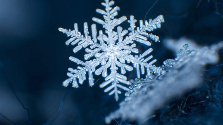 Să cadă fulgi din nou! Meteorologii anunță ninsori