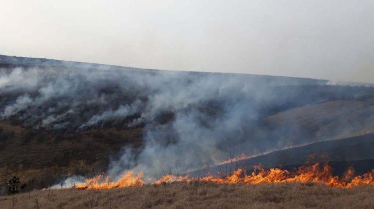 Moldova – pârjolită de incendiile de vegetație uscată. Îndemnul pompierilor (FOTO/VIDEO)