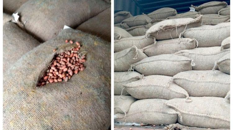 Incredibil! Peste 26 mii de kg de arahide pline cu mucegai urmau să fie vândute în piețele din Capitală