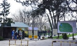 (FOTO) Ion Ceban: Intrările din parcul Dendrariu vor fi modernizate