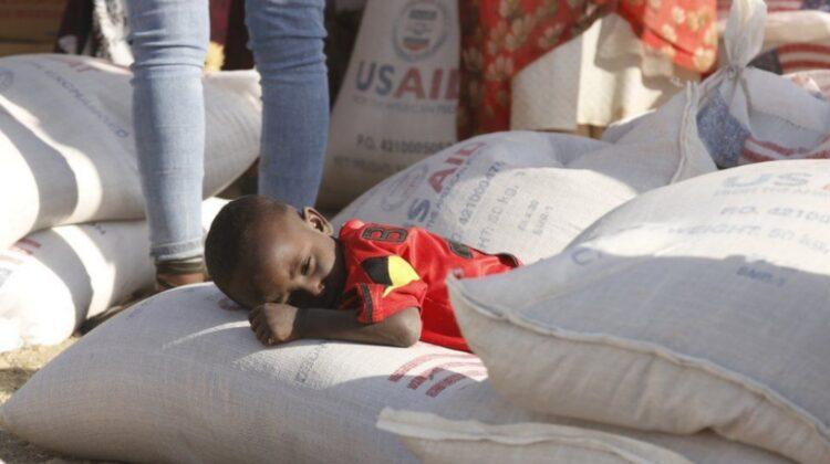 """""""Moartea ne bate la ușă"""". Sute de mii de oameni nu mai au ce mânca într-o regiune din Etiopia"""