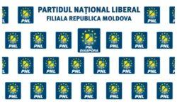 "Organizația PNL Diaspora Republica Moldova și-a ales un ""nou-vechi"" președinte"