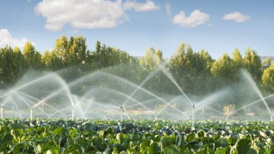 Planuri ambițioase. Statul ar urma în decurs de 10 ani să construiască sisteme de irigare pentru 250 de mii de ha