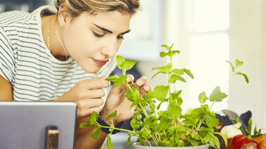 """""""Antrenamentul mirosului"""" recomandat pentru recăpătarea mirosului după COVID-19"""