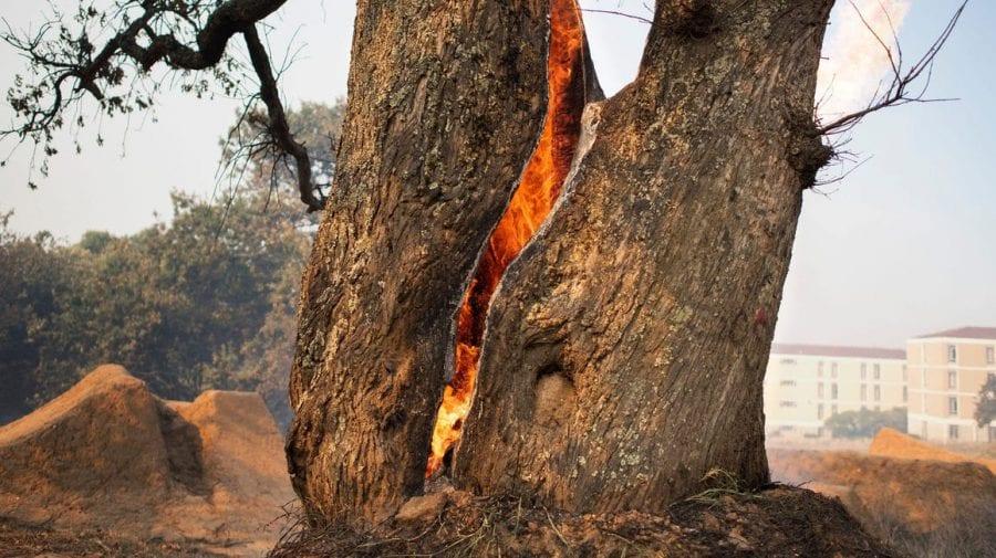 (FOTO) Imagini apocaliptice în Africa! Un incendiu a distrus clădiri istorice și a forțat evacuarea populației