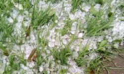 Acoperișuri smulse și mii de hectare afectate. Pagubele ploilor – discutate la Guvern