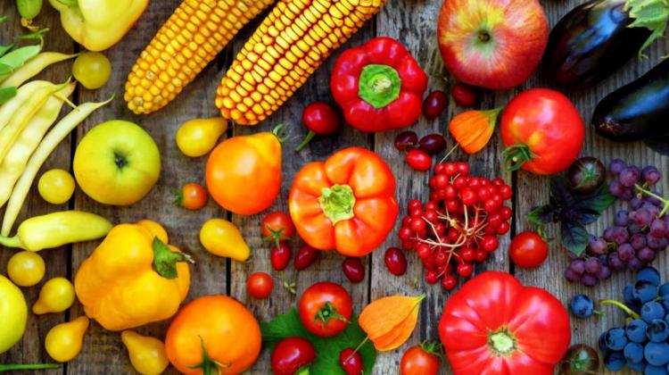 Risipa de alimente – cea mai mare sursă de emisii de gaze cu efect de seră din lume
