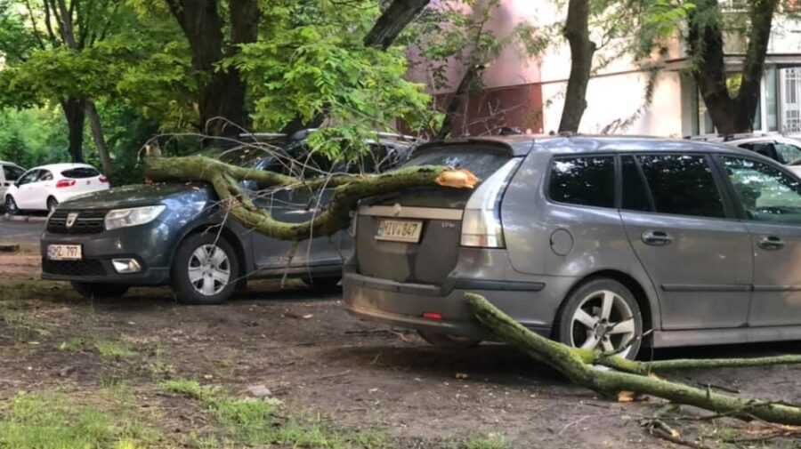 De trei zile, de trei nopți – ploi! În capitală, câțiva șoferi s-au trezit cu crengi pe mașini. Cum va fi vremea azi