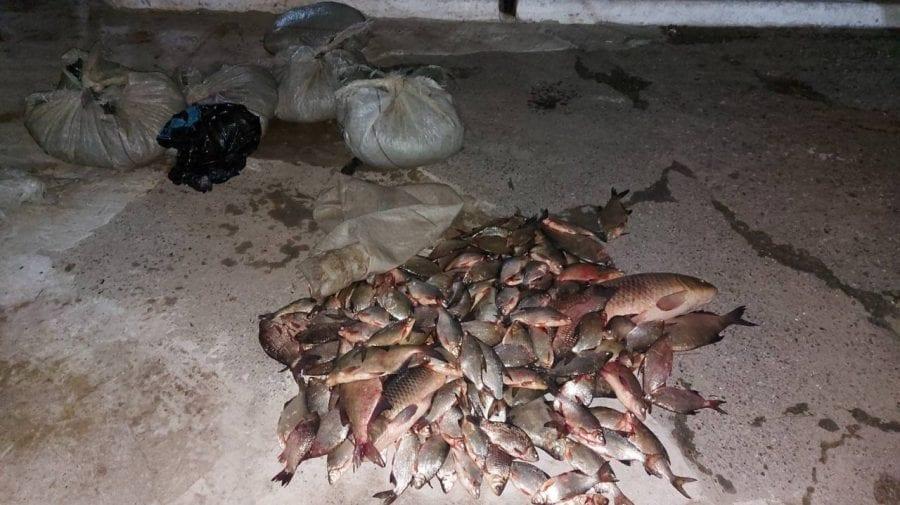 Chiar dacă este perioada de interdicție pentru pescuit, doi moldoveni au fost depistați cu plasele pline cu pește