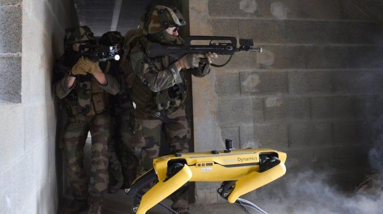 """(VIDEO) Primul """"robodog"""" din Europa va fi folosit în cadrul operațiunilor antidrog"""