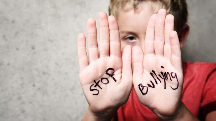 Angajații din educație din Ungheni și Cahul, instruiți cum să prevină bullying-ul în școli