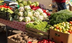 În Republica Moldova a scăzut producția agricolă de la începutul acestui an