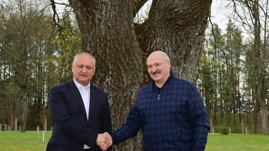 Dodon a mers cu Greceanîi și deputații socialiști în vizita din Belarus? Se află și el într-o vizită la Minsk