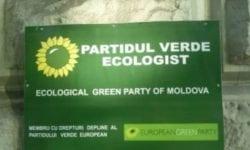 """""""Verde pentru țară, verde-n Parlament"""". Ecologiștii vor participa la alegerile parlamentare anticipate"""