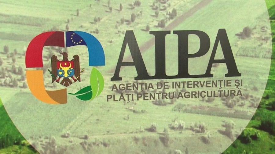 Ce spune AIPA despre perchezițiile matinale ale ofițerilor CNA