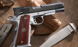 UTIL! Recomandările poliției pentru deţinătorii armelor de foc