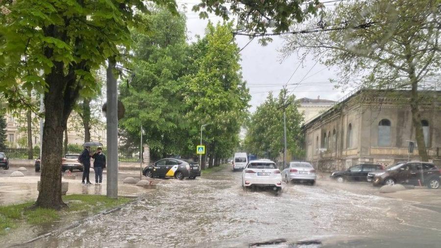 Recomandarea municipalității: Fiți prudenți la drum, evitați aflarea sub copacii bătrâni