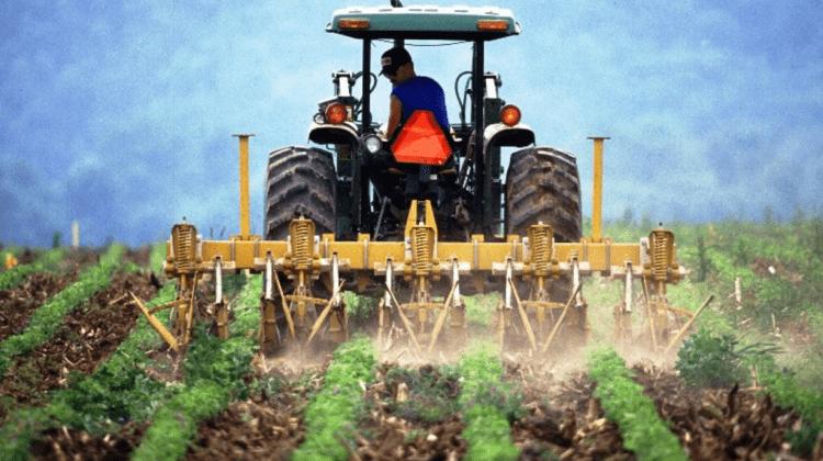 Producătorii agricoli sunt expuși unui șir de provocări, secretar de stat de la Agricultură