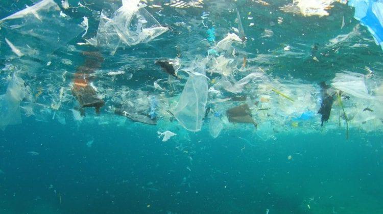Poluarea Mării Negre, subiect al unui concurs de eseuri! Premiul mare – 1 000 euro