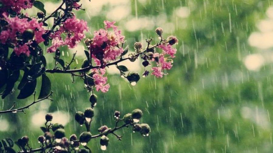 O zi cu soare, alta cu ploi. Află ce temperaturi sunt prognozate pentru această săptămână