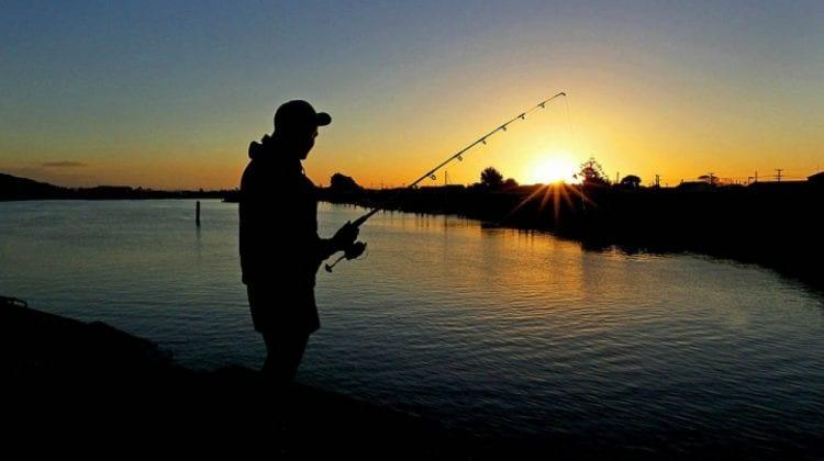 Veste bună pentru pescari! Din 16 mai se permite pescuitul scrumbiei de Dunăre