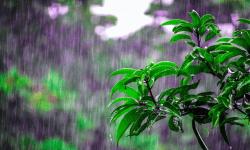 ALERTĂ! Vara se încheie cu ploi. Prognoza meteo pentru duminică