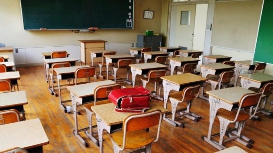 Vaccinarea anti-COVID în școlile din țară? Cum răspunde la această întrebare Ala Nemerenco