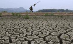 Moldova ar putea beneficia de 15 milioane de dolari! Proiectul vizează seceta din sudul țării