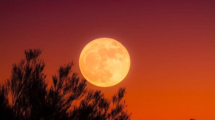 """Luna plină sau """"superluna sângerie"""", un fenomen astronomic major – singura eclipsă totală de Lună din acest an"""