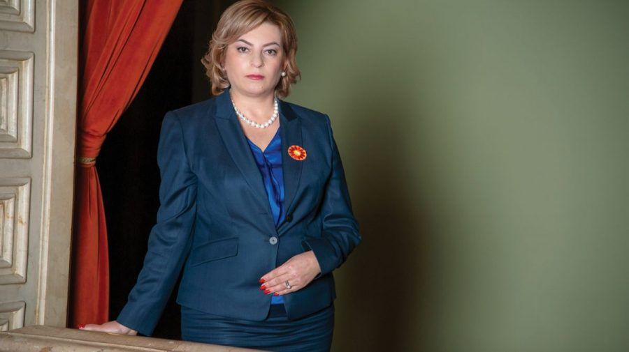Durleșteanu, fosta candidată PSRM la șefia Guvernului pledează pentru lichidarea raioanelor. Programul electoral al PLD