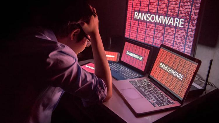 Americanii, puși în gardă: cum arată lumii că securitatea cibernetică nu este doar un moft