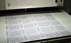 Se mărește buletinul de vot. Alte două partide politice, înregistrate de CEC în cursa electorală