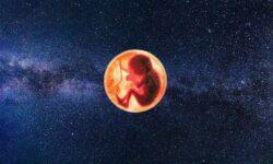 Când se va naște primul copil în cosmos? Va fi începutul civilizației multiplanetare