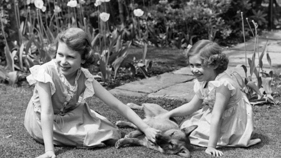 FOTO Viață de câine bogat: Despre iubirea monarhilor față de animalele lor de companie