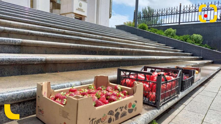 Reacția Maiei Sandu cu privire la roșiile, căpșunile și caisele aduse în semn de protest pe scările Președinției