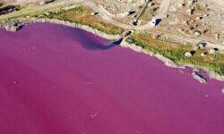 FOTO Un lac din lume a devenit peste noapte roz