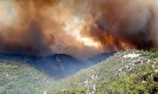 VIDEO INCENDIU de proporții în Antalya! Din cauza vântului, flăcările se extind rapid. Turiștii și locuitorii, evacuați