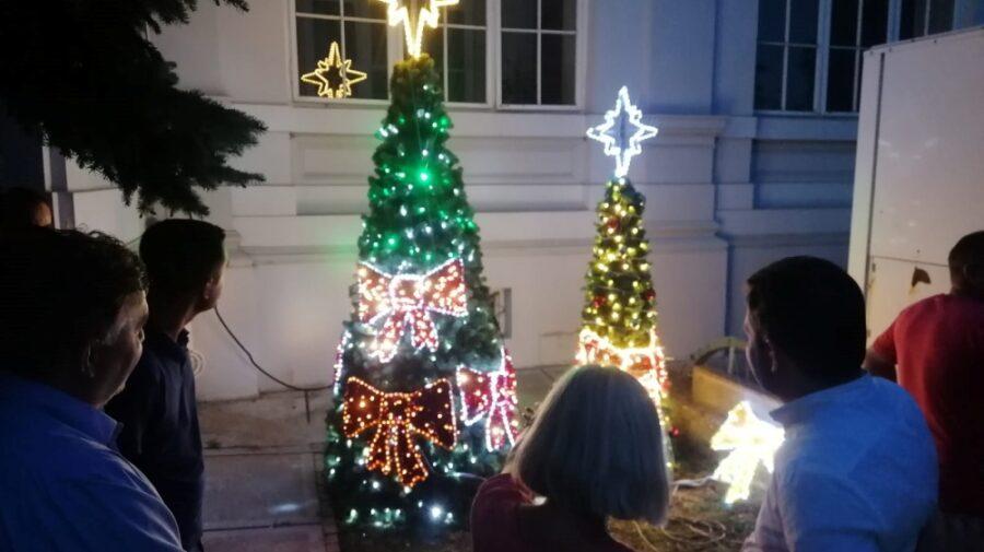 FOTO Atmosferă de Crăciun, în plină caniculă! Într-un oraș din România, Primăria caută deja brazi pentru sărbători