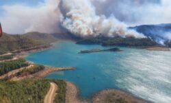 FOTO Imagini terifiante. Incendiile din Turcia, văzute din avion