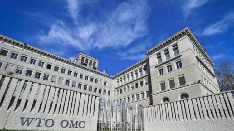 Moldova marchează 20 de ani de la aderarea la Organizația Mondială a Comerțului