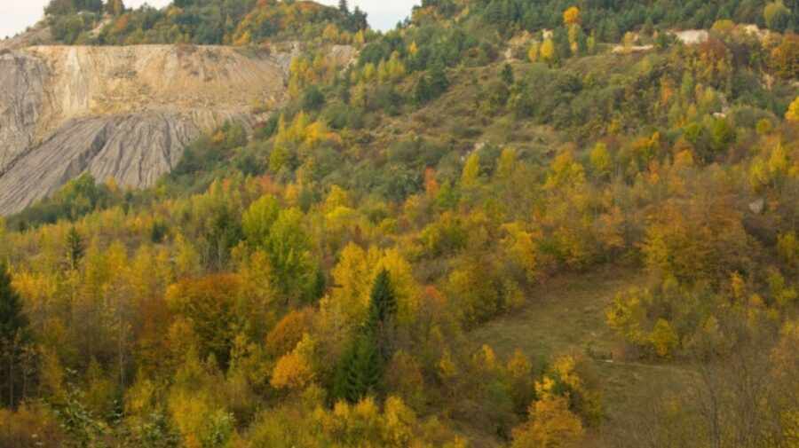 """Roșia Montană în UNESCO! """"Nu putem aștepta ca minerii să facă suc de zmeură"""""""