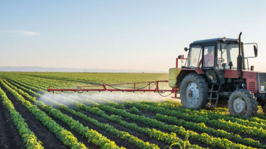 Cercetătorii moldoveni propun elaborarea unor sisteme noi de agricultură, precum trecerea la producerea ecologică