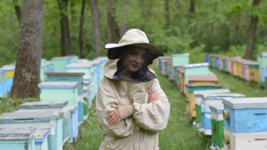 """""""Adoptă"""" o familie de albine! Este inițiativa inedită a unei antreprenoare din Moldova"""