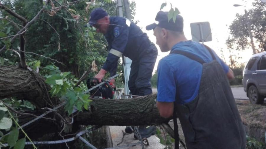 Consecințele ploilor: Un copac a căzut pe acoperișul unei case și mai multe localități au rămas fără energie electrică