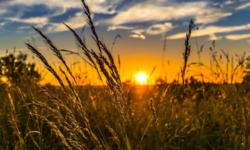 Prognoza meteo pentru zilele de weekend: Ce temperaturi ne aduce prima zi a lunii august?