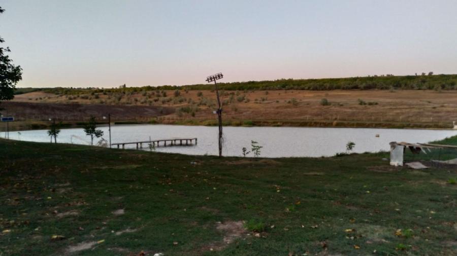 Tragedie în Orhei! Corpul neînsuflețit al unui bărbat de 54 de ani, depistat înecat într-un iaz