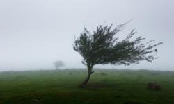 COD GALBEN de INSTABILITATE ATMOSFERICĂ: Averse puternice și intensificări ale vântului