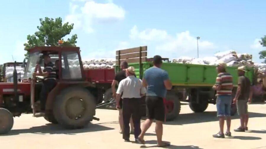 Fermieri români aruncă pe câmp tone de legume! Sunt nemulțumiți de prețurile prea mici din piață
